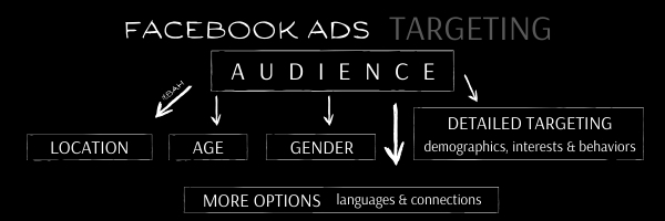 BAH blog graphic showing a picture of the Facebook ads audience diagram.