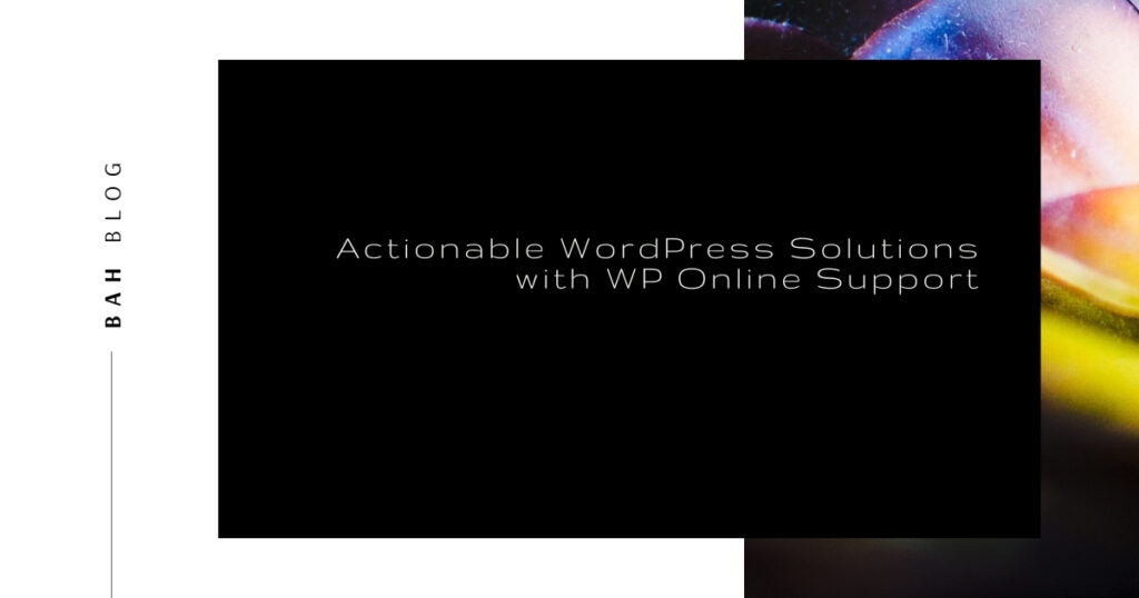 BAH blog featured image rainbow succulent Actionable WordPress Solutions with WP Online Support