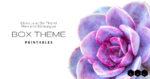 Box Theme Printables featured image succulent