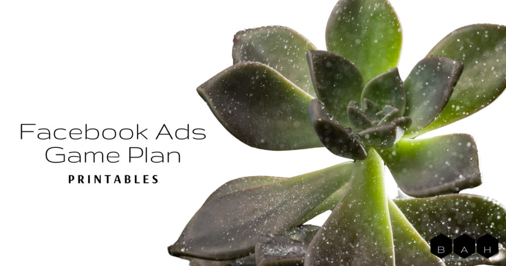 Facebook Ads Game Plan Printables featured image succulent