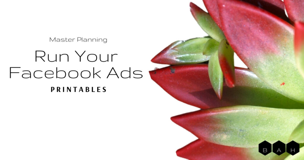Colorful succulent white background featured image Master Planning Run Your Facebook Ads Printables