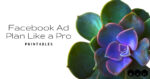 Facebook Ad Plan Like a Pro Printables featured image succulent
